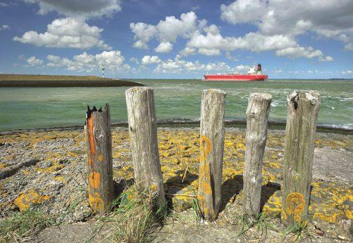 Huisartsen Zeeland: op weg naar toekomstbestendige zorg